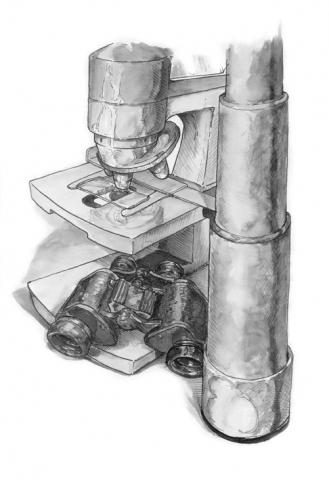 ink wash illustration
